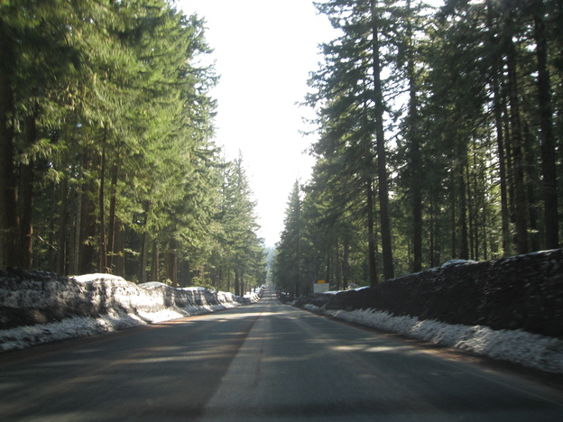 Driving Route 20 in Oregon