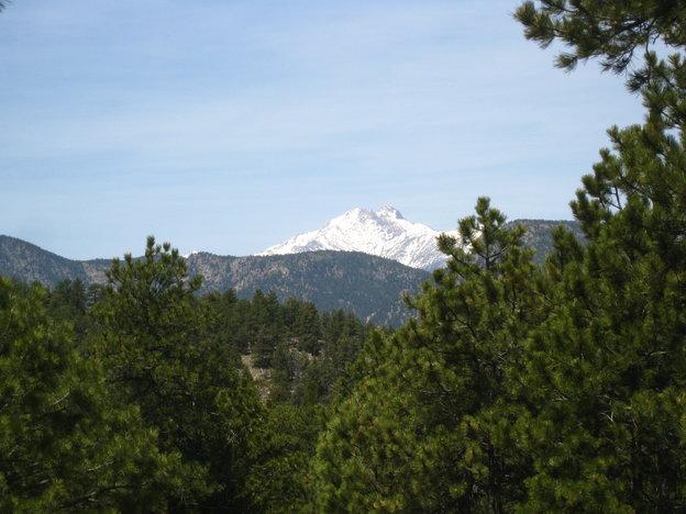 View of Long's Peak from Wapiti trail